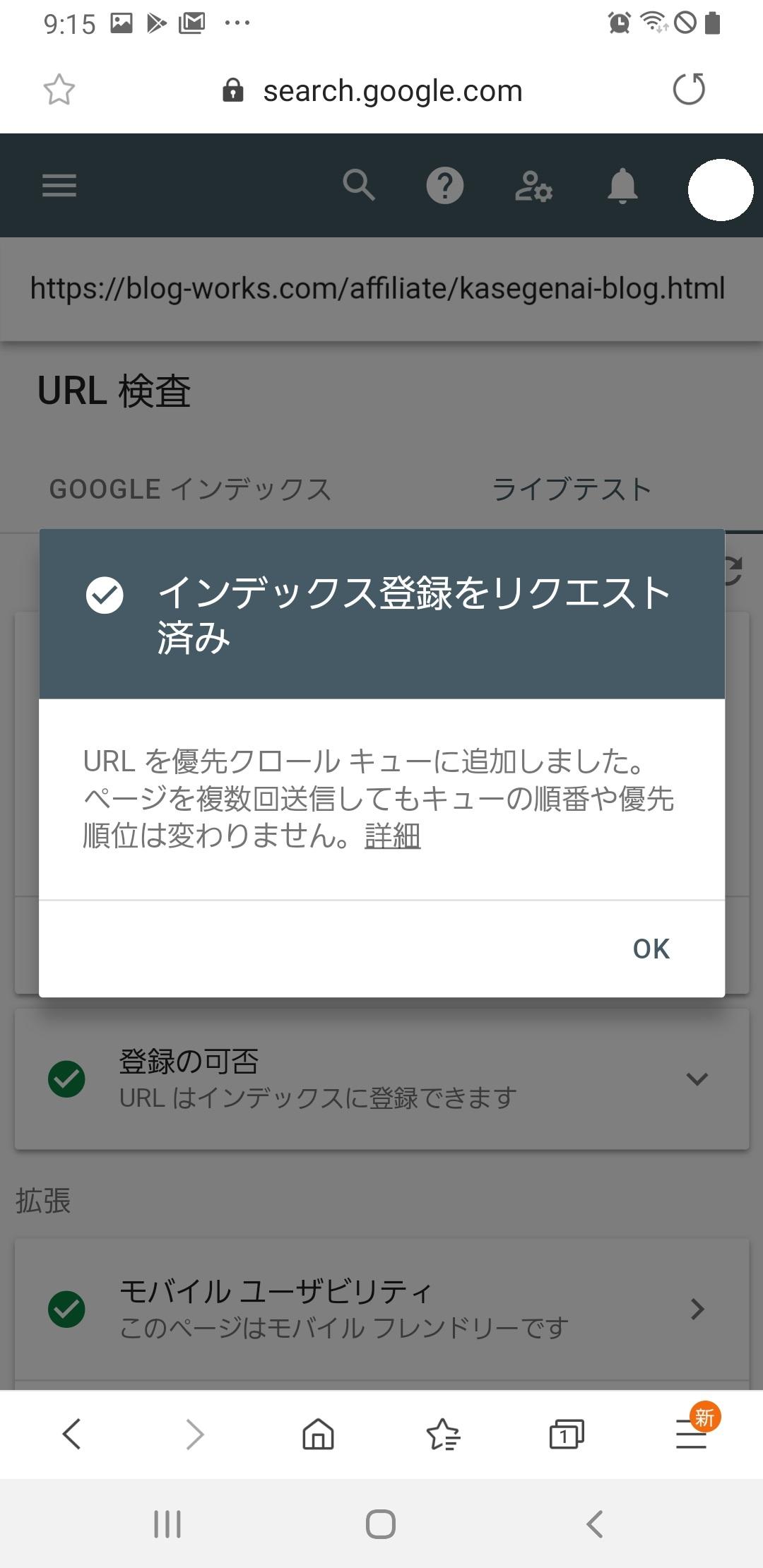 Google Serch Console インデックス登録完了